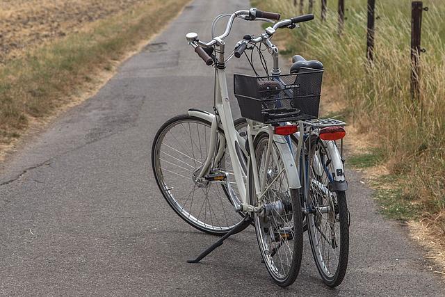 Zwei Räder parken auf einem Wirtschaftsweg neben einer Weide