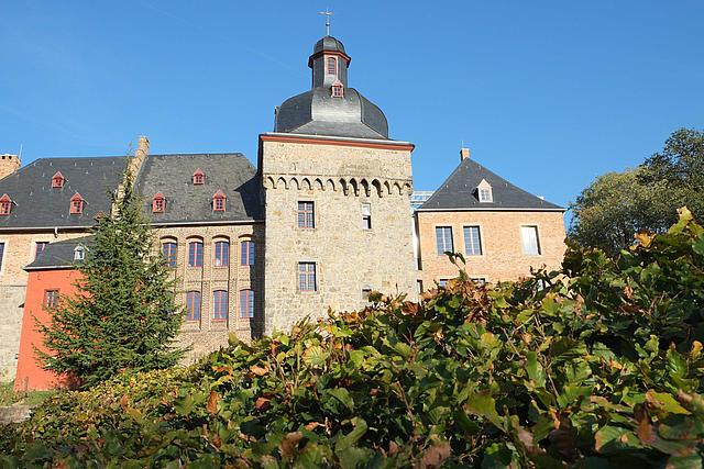 Schloss Liedberg mit Hecke im Vordergrund
