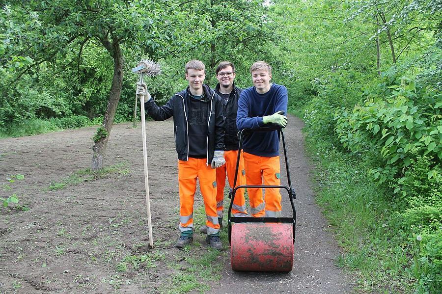Bufids pflanzen eine neue Blumenwiese an
